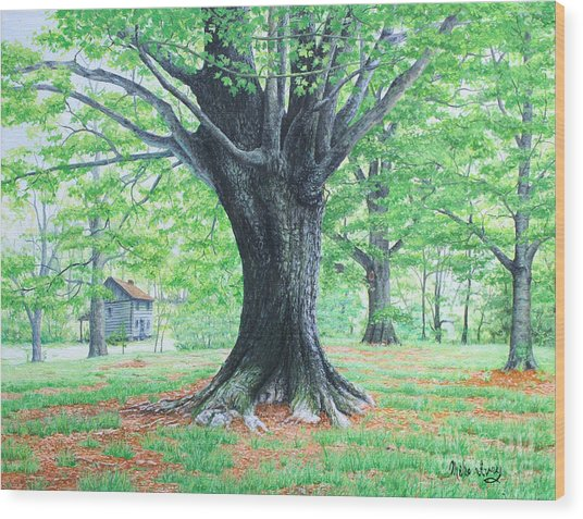 Red Clay Tennessee Wood Print