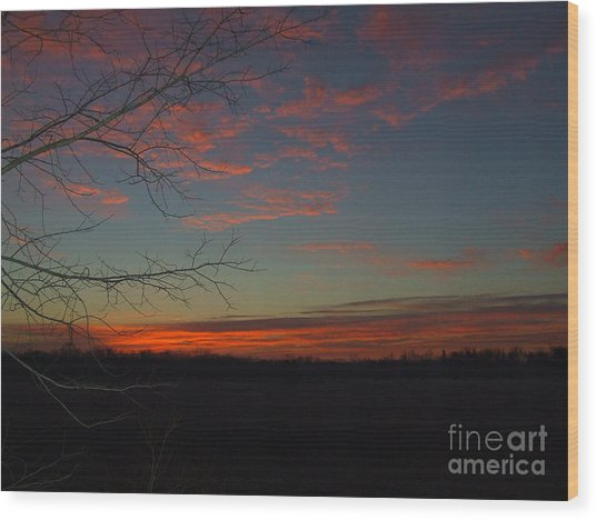 Red Dawn Lv Wood Print