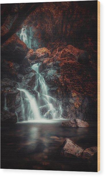 Red Eden Wood Print by Rudi Gunawan