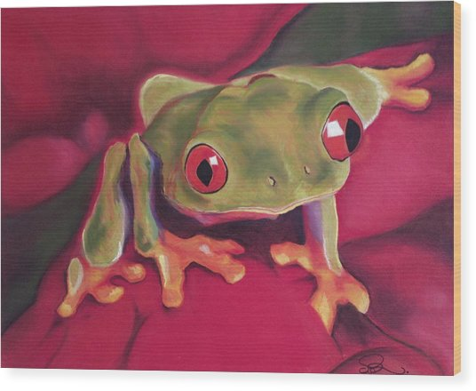 Red-eyed Tree Frog On Red Foliage Wood Print