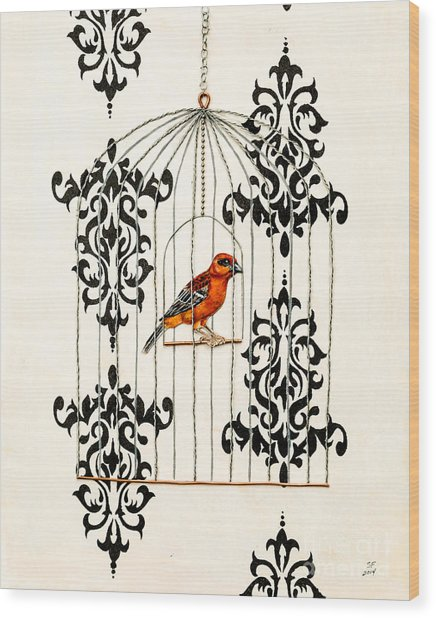 Red Finch Wood Print