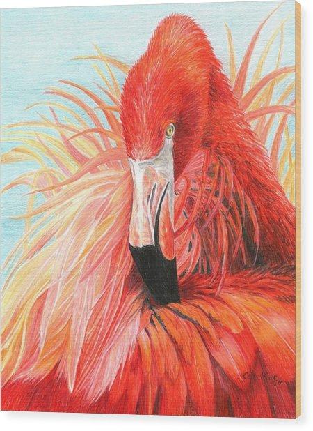 Red Flamingo Wood Print