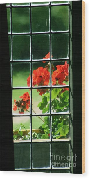 Red Geranium Through Leaded Window Wood Print