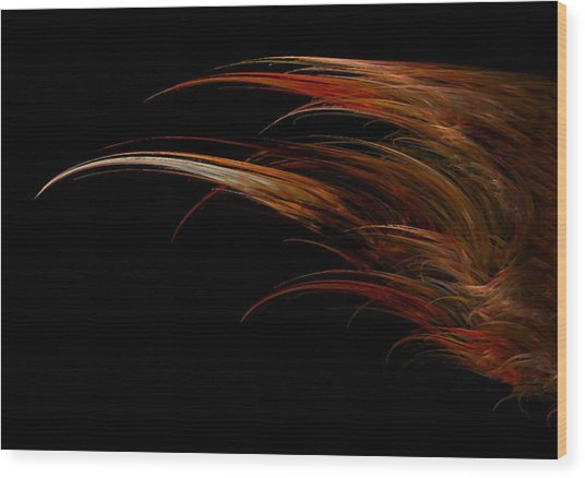 Red Headed Angel Wing Wood Print by Madeline  Allen - SmudgeArt