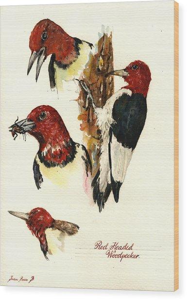 Red Headed Woodpecker Bird Wood Print