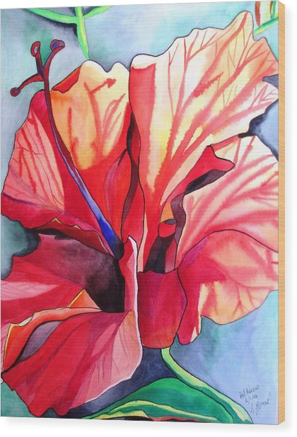 Red Hibiscus Tropical Flower Wood Print by Sacha Grossel