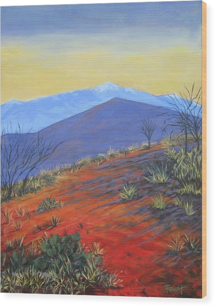Red Landscape Wood Print by Gene Foust