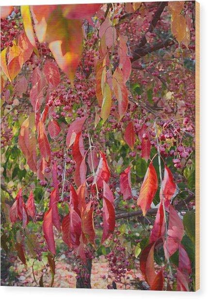 Red Leaves And Berries Wood Print