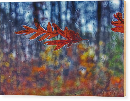 red leaves on windshield Dry Brush Wood Print