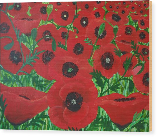 Red Poppies 1 Wood Print