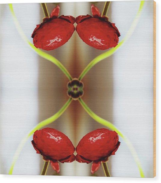 Red Ranunculus Wood Print by Silvia Otte