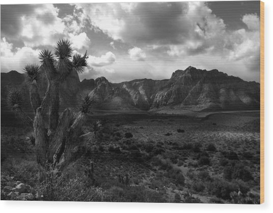 Red Rock Mountains Wood Print