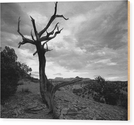 Red Rocks Dead Tree Wood Print