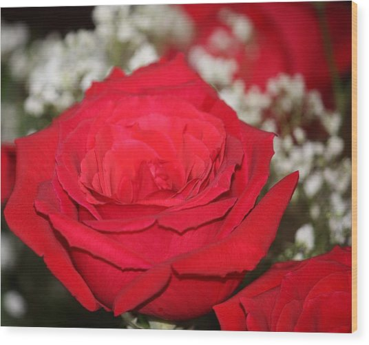Red Rose Wood Print by Kimber  Butler