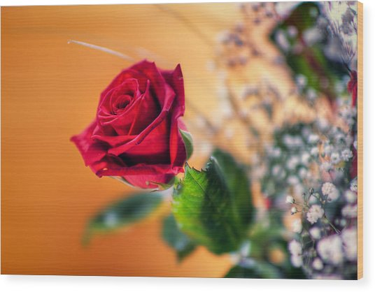 Red Rose Of Love Wood Print