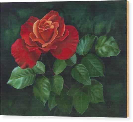 Red Rose - Oil Painting On Canvas Wood Print