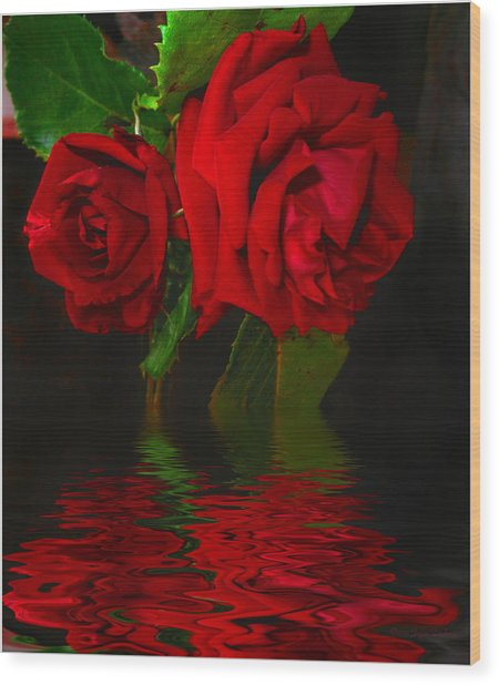 Red Roses Reflected Wood Print