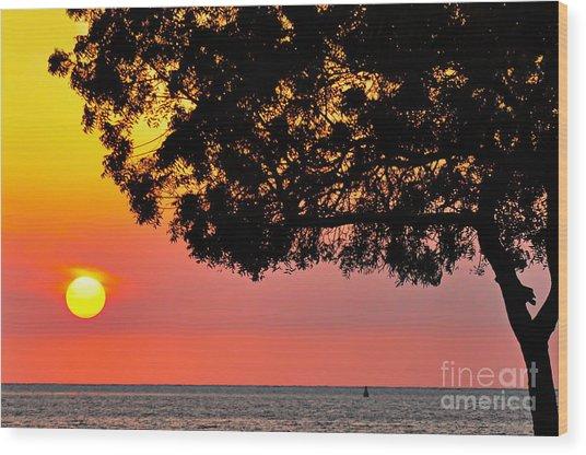 Red Sea Sunset Wood Print by George Paris