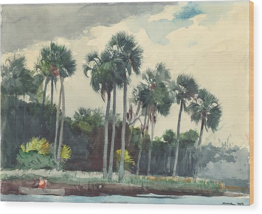 Red Shirt Homosassa Florida  Wood Print