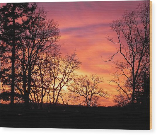 Red Sky At Night Sailor's Delight Wood Print