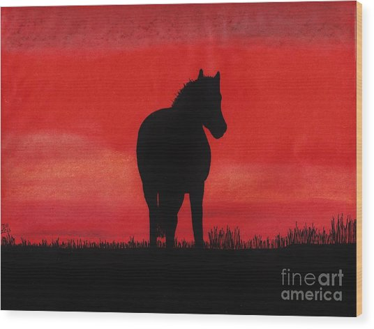 Red Sunset Horse Wood Print