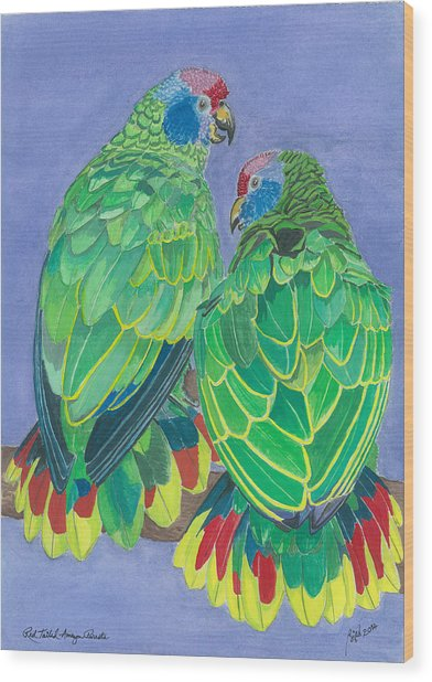 Red Tailed Amazon Parrots Wood Print by Anthony Purification