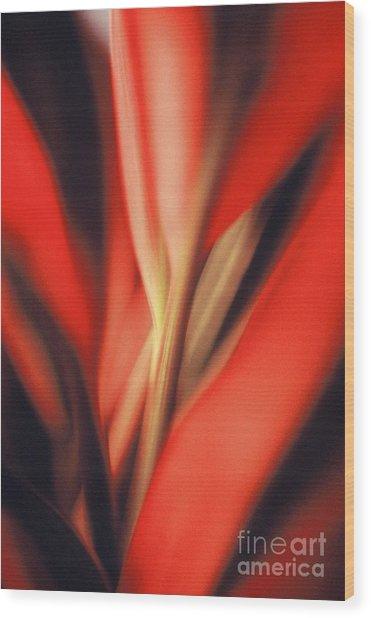 Red Ti Wood Print