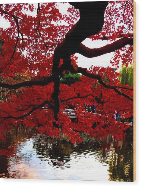 Red Tree Wood Print