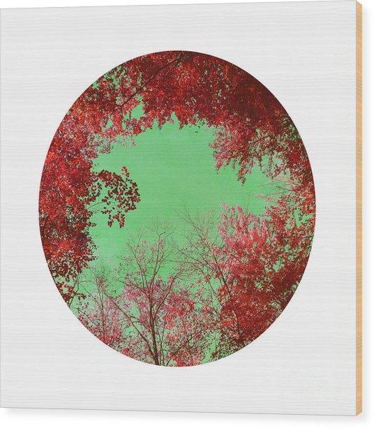 Red Trees Wood Print by Angela Bruno
