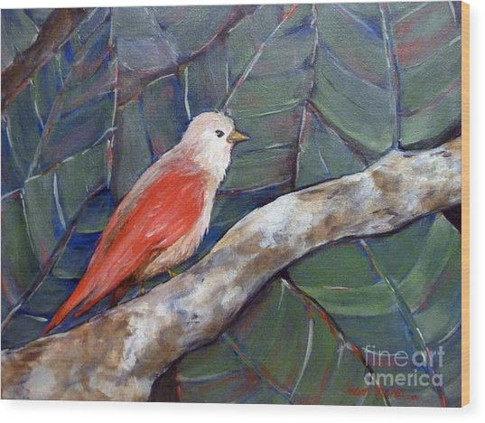Red Winged Wood Print