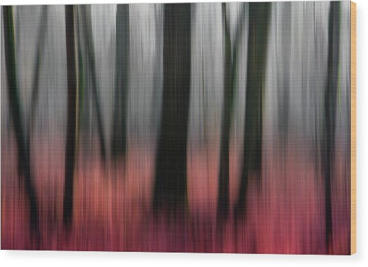 Red Wood Wood Print by Gilbert Claes