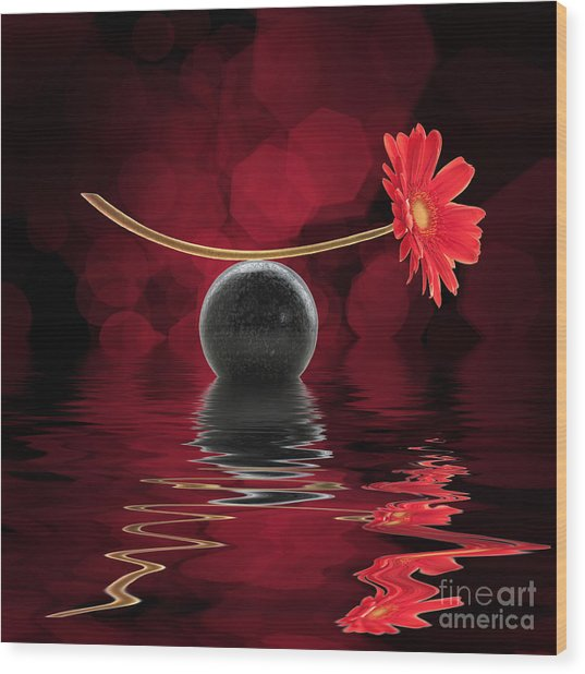 Red Zen Gerbera Wood Print