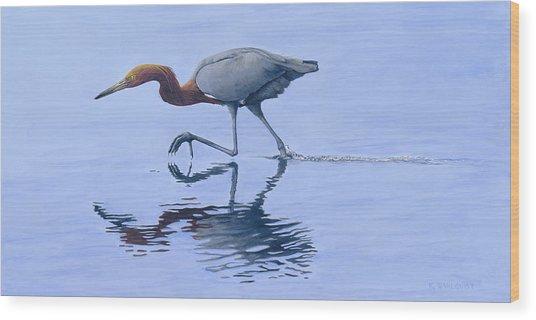 Reddish Egret Wood Print by Kirsten Wahlquist