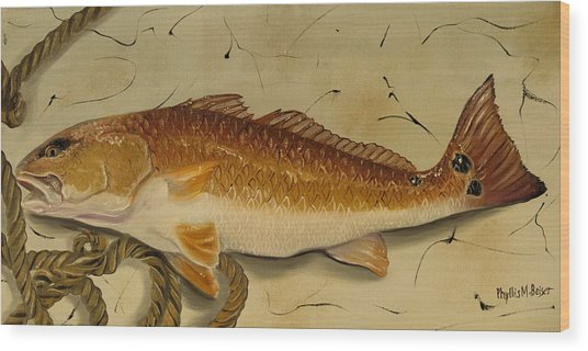 Redfish In The Boat Wood Print