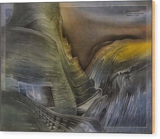 Redrocksamphiscape 2010 Wood Print