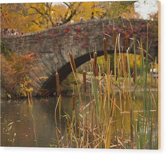 Reeds And Gapstow Bridge Wood Print