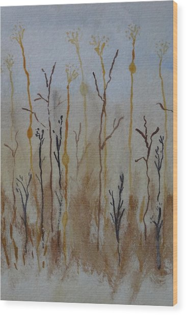 Reeds And Weeds Wood Print by Catherine Arcolio