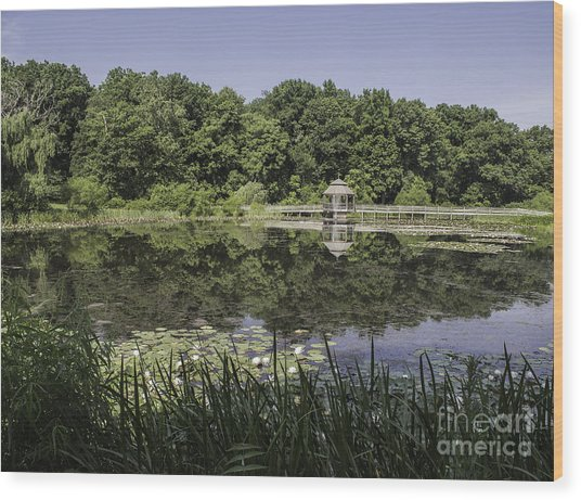 Refection In The Pond Wood Print