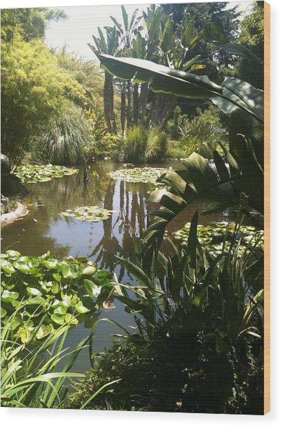 Reflected Beauty Wood Print