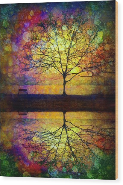 Reflected Dreams Wood Print