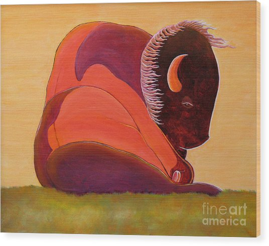 Reflecting Buffalo Wood Print