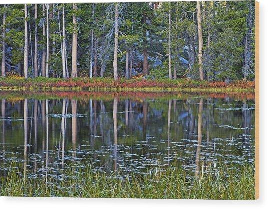 Reflecting Nature Wood Print