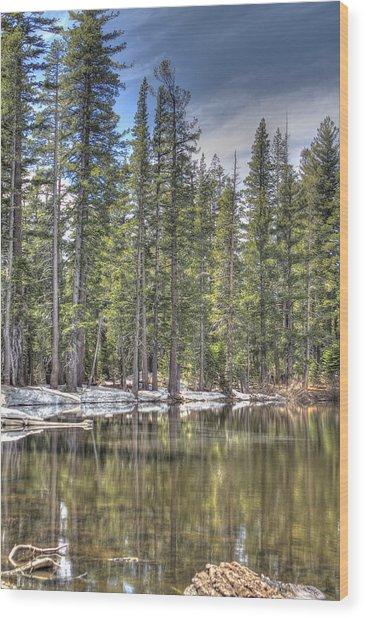 reflecting pond 4 Carson Spur Wood Print