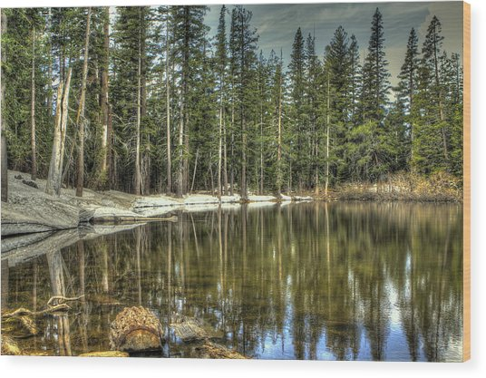 reflecting pond Carson Spur Wood Print