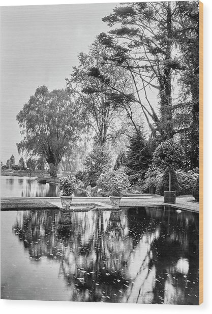 Reflecting Pool In Oyster Bay Wood Print