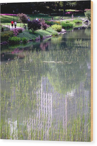 Reflection And Movement Wood Print