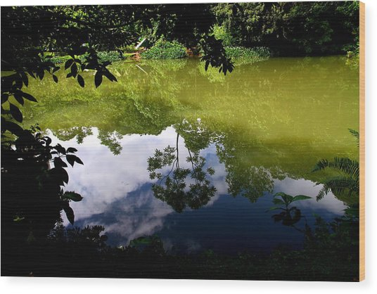 Reflection Wood Print by Arie Arik Chen