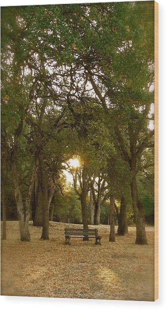 Reflection At Sunrise Wood Print