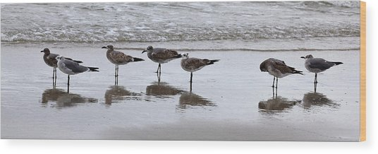 Reflection At The Beach Wood Print