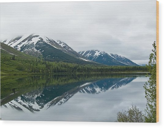 Reflection Montana  Wood Print
